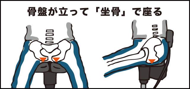 坐骨で座る 骨盤が立つ